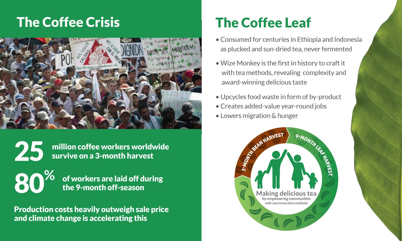 The Coffee Crisis